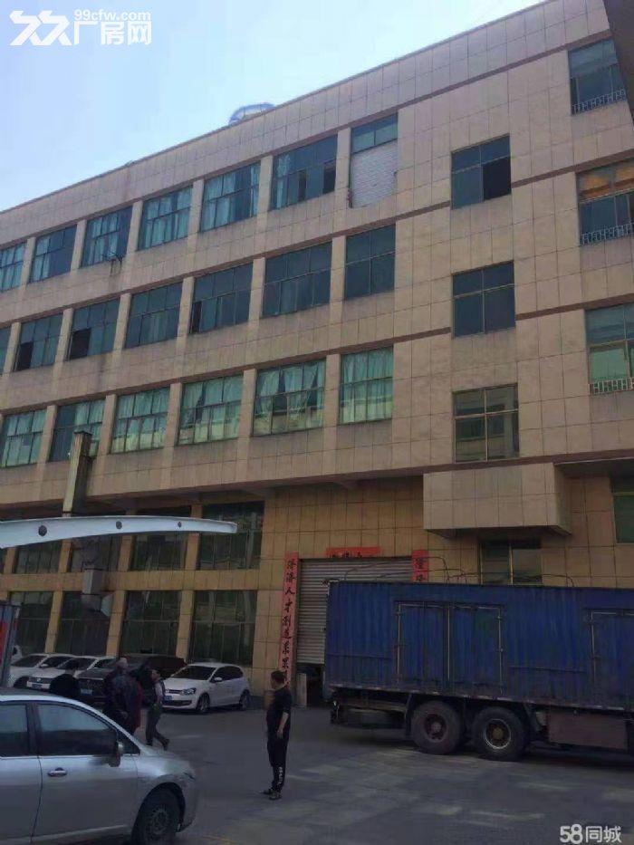 永康城西新区西塔二路1000㎡厂房出租-图(6)