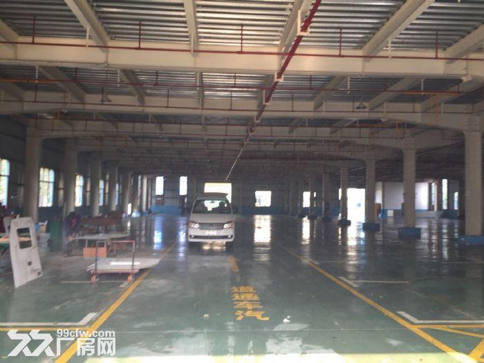洛维16000平米厂房出租-图(2)