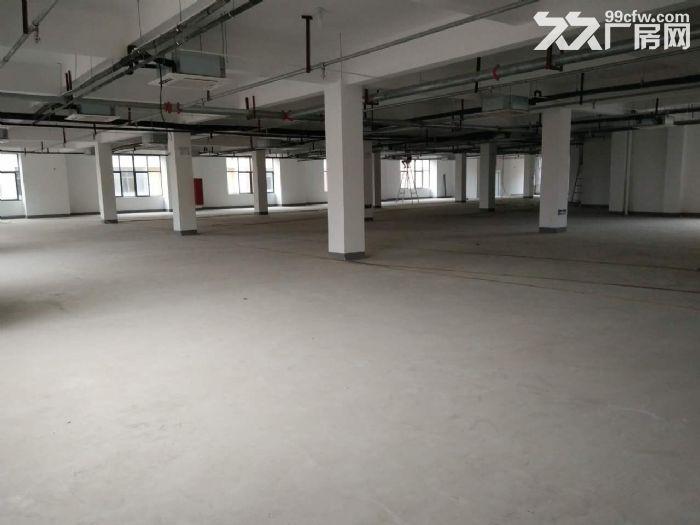 目前园区有40−2800平方写字楼,办公研发一体化场地对外出租-图(3)