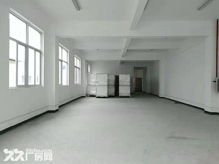 青浦全新厂房招租,厂房面积+办公面积1.3万平带行车,看房随时-图(8)