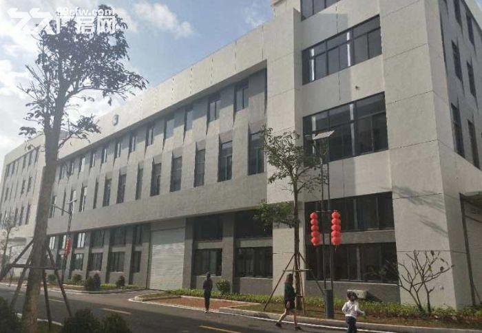 中盟科技园2500平标准厂房出租-图(2)
