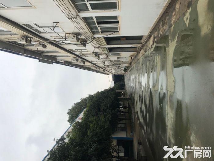 武汉江夏区郑店钢结构厂房出租-图(3)
