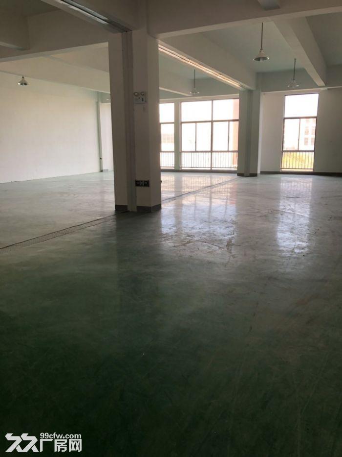 直招新区泰山路100、200、300平米办公厂房出租-图(1)