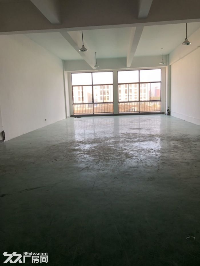 直招新区泰山路100、200、300平米办公厂房出租-图(3)