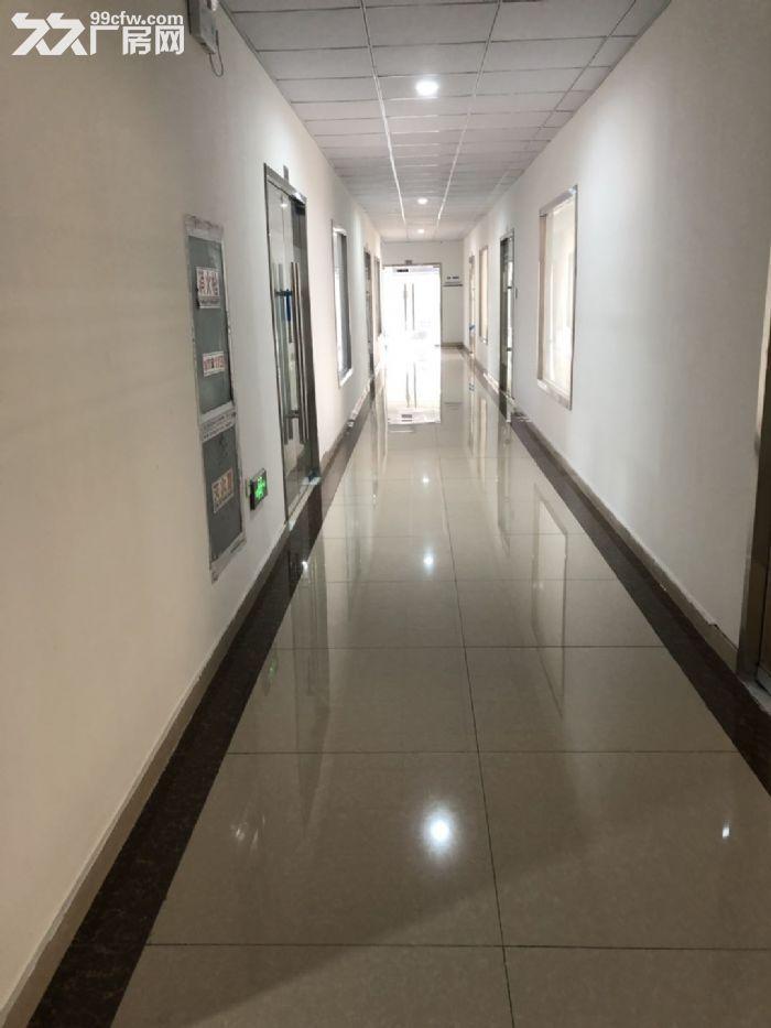 直招新区泰山路100、200、300平米办公厂房出租-图(4)