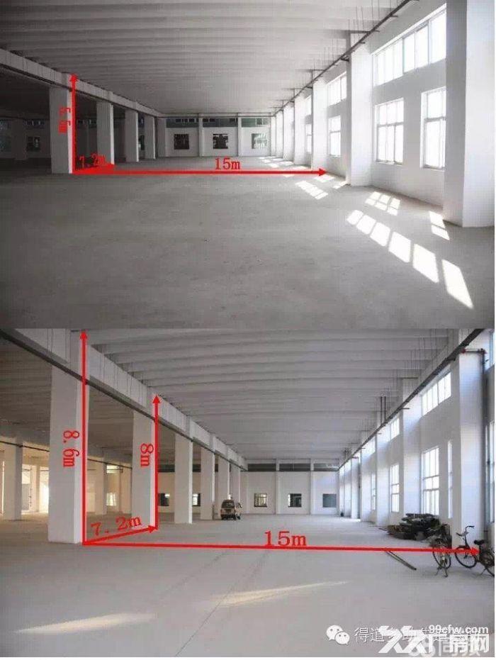 大跨度框架式标准厂房对外出租-图(3)