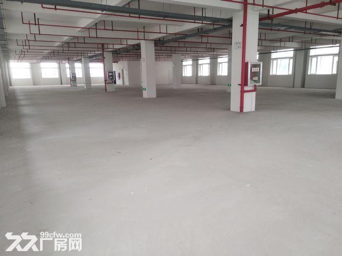 浦口开发区全新厂房可分租-图(1)