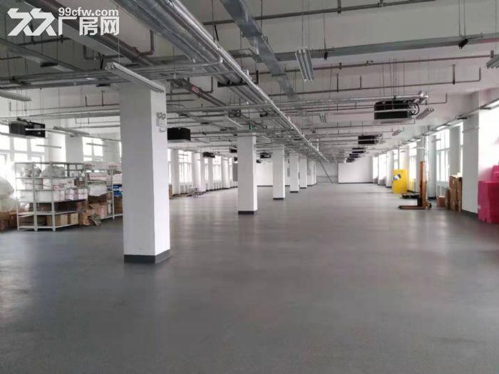 浦口开发区全新厂房可分租-图(2)