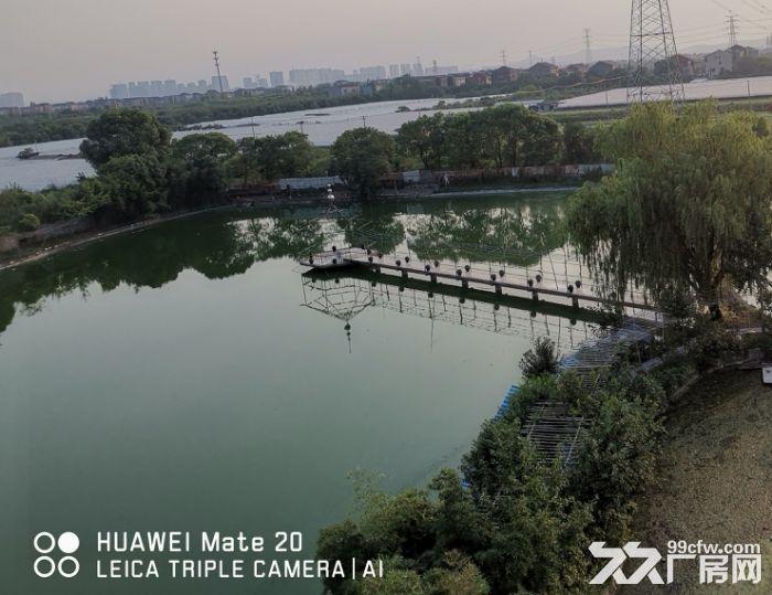 杭州城北绕城边农庄出租/合作-图(2)