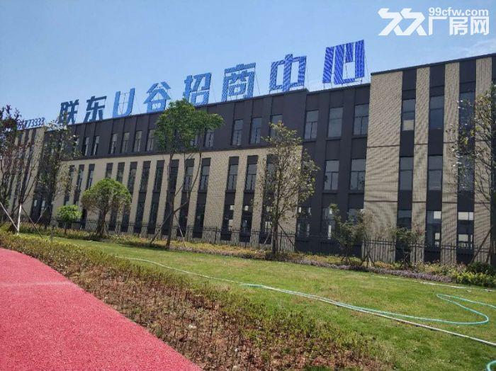 出租天府新区高品质厂房,带装修,可立即办公-图(3)