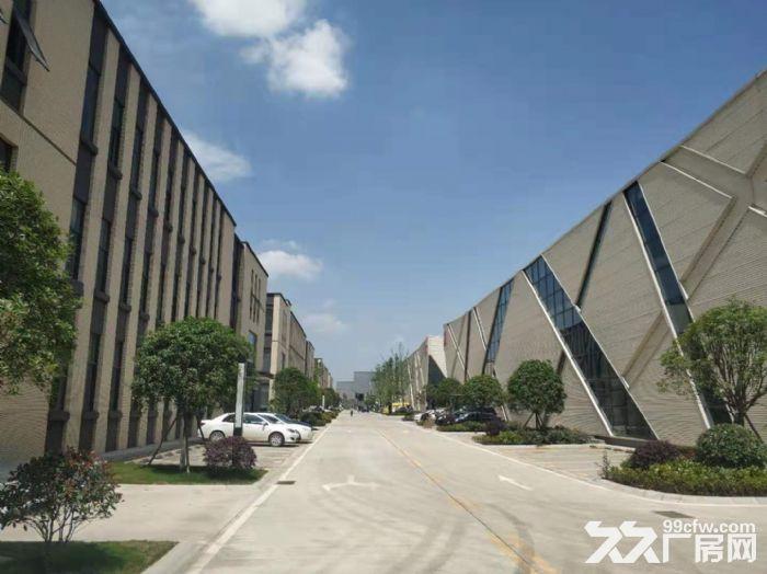 出租天府新区高品质厂房,带装修,可立即办公-图(5)