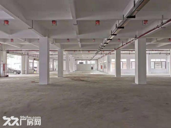 近地铁,3吨货梯,可办环评,带装修,钟村独门独院标准厂房出租-图(3)