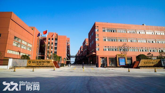 台州之恩电镀园区1000−50000平方招商招租-图(2)