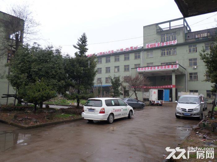 厂房出租3000㎡优价急招13706798538何,-图(2)