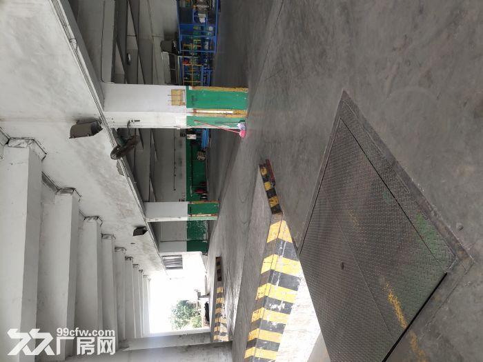 广州科学城路段超级好!-图(6)