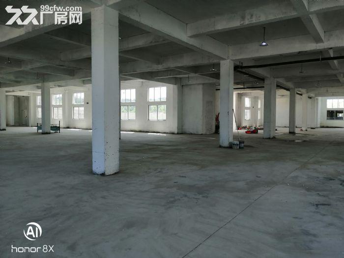 临港区花果山路全新厂房出租-图(1)