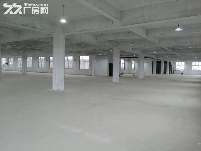 临港区花果山路全新厂房出租-图(3)