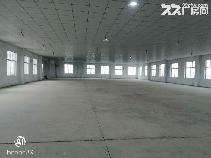 临港区花果山路全新厂房出租-图(4)