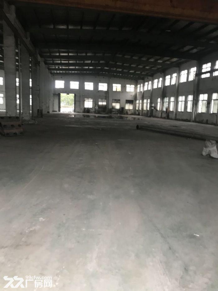 滨海单层11米高厂房出租-图(1)
