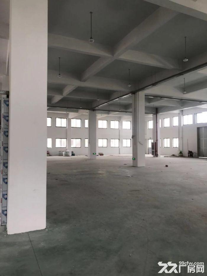 滨海单层11米高厂房出租-图(2)