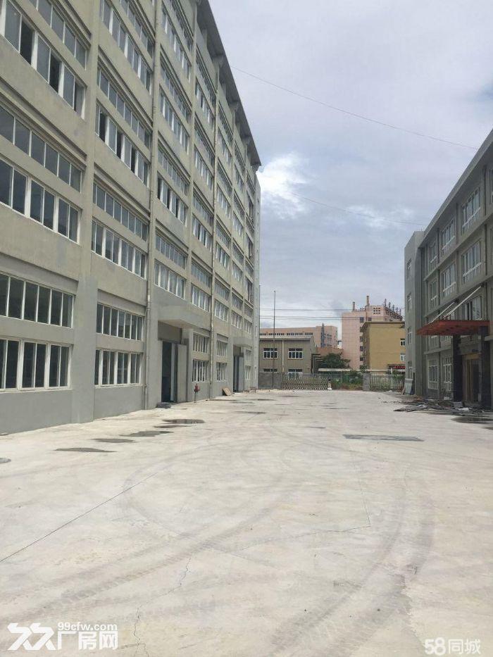 瑞安桐浦工业区厂房一楼1000平米出租高度6米价格便宜。-图(1)