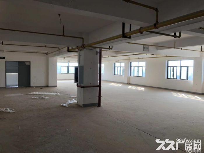 (出租)四环内大型园区招商适合办公仓储展厅-图(6)