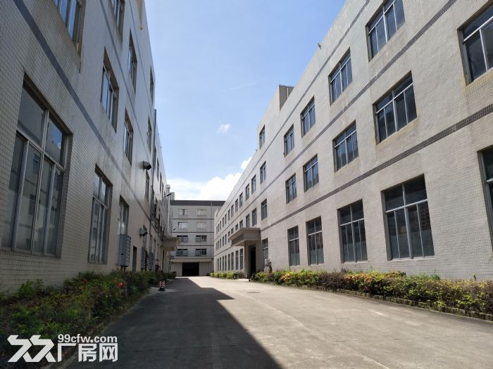10元起水口带卸货平台三层19500平方红本标准厂房仓库招租-图(3)
