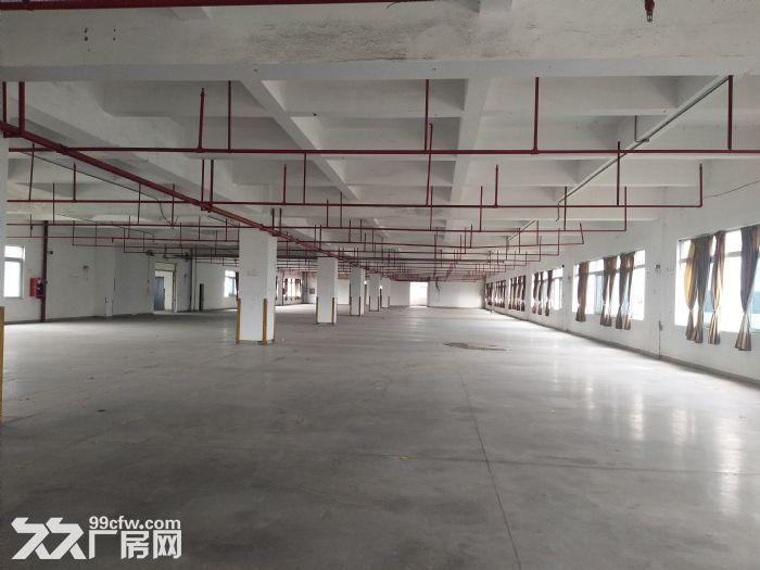 10元起水口带卸货平台三层19500平方红本标准厂房仓库招租-图(4)