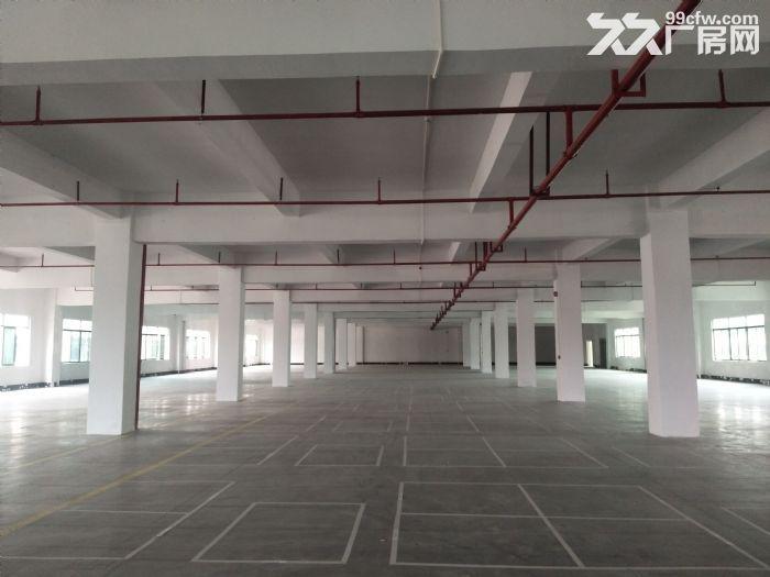 10元起水口带卸货平台三层19500平方红本标准厂房仓库招租-图(5)