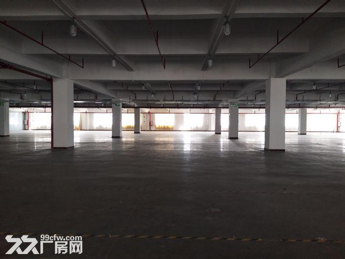 10元起水口带卸货平台三层19500平方红本标准厂房仓库招租-图(6)