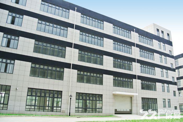 企福星尚科技园区,企福自持高端工业园区-图(4)