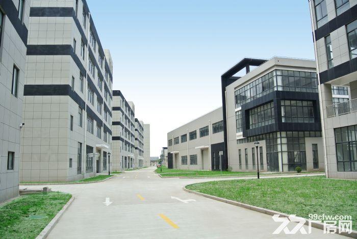企福星尚科技园区,企福自持高端工业园区-图(5)
