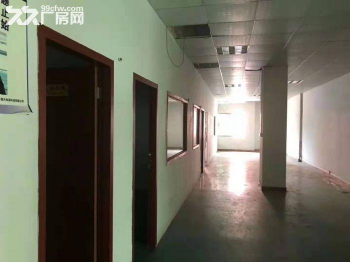 凤岗凤德岭注塑五金模具一楼厂房出租1000平现成办公室-图(3)
