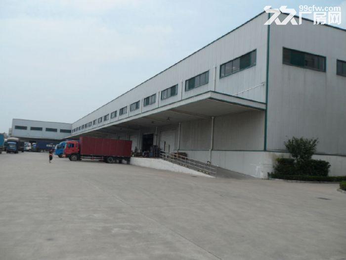 企石镇新出钢结构厂房5000平方-图(1)