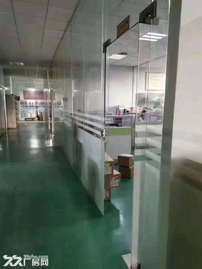 东城石井带地坪漆标准厂房800平方出租-图(3)