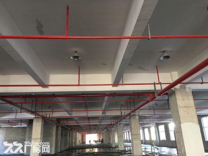 金华玉泉东路318号厂房出租,每层2400平,共五层,最少租半层1200平。-图(2)