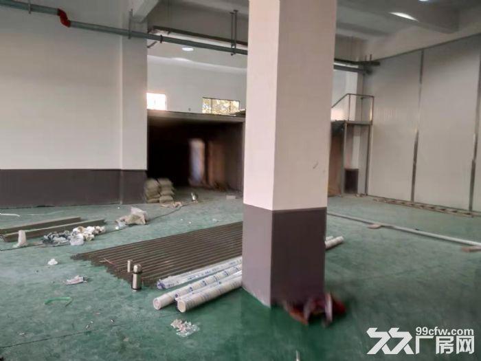 常州天宁区竹北路厂房出租-图(4)