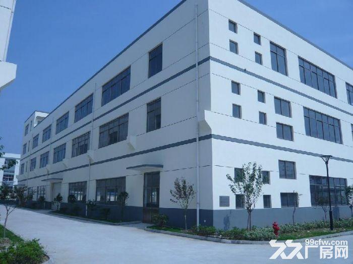 出租海宁长安101省道旁3500方厂房1−2层1楼层9米带有月台-图(1)