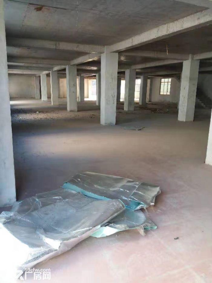 出租(胜利路53号)占地九亩,建筑面积4200平米仓库或厂房-图(3)