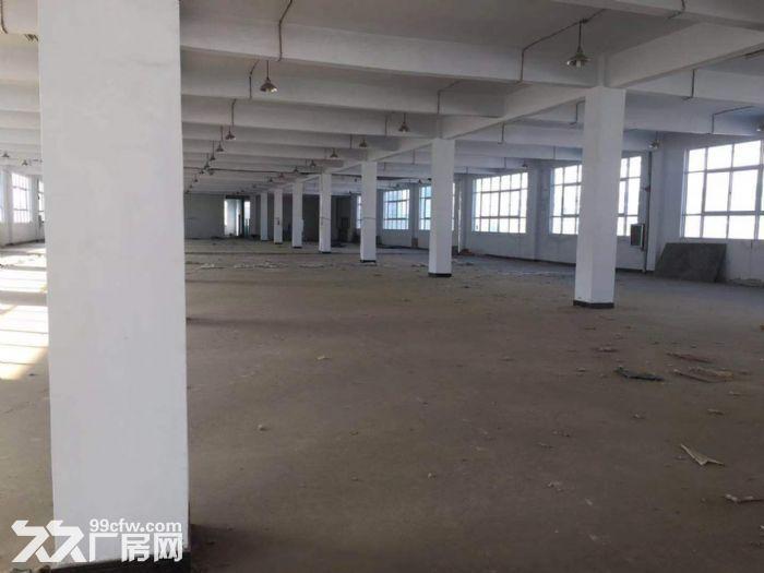 青网科技园招商部直租60至2000平仓储办公一体化-图(7)