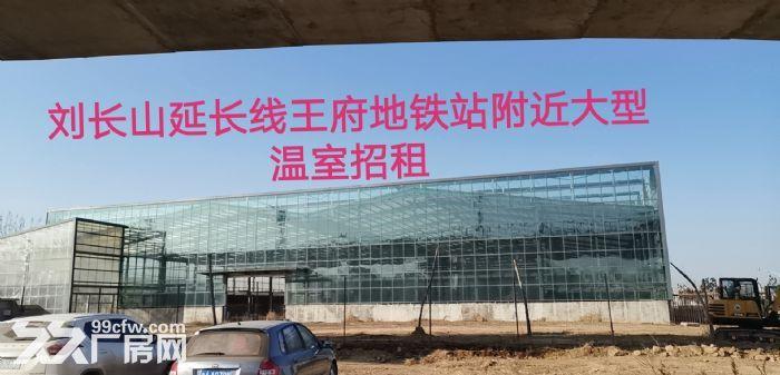 出租槐荫区经十西路济西二手车市场附近大型仓库-图(5)