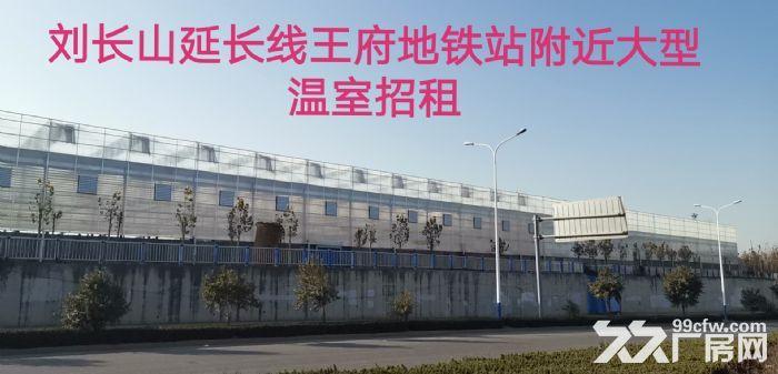 出租槐荫区经十西路济西二手车市场附近大型仓库-图(6)