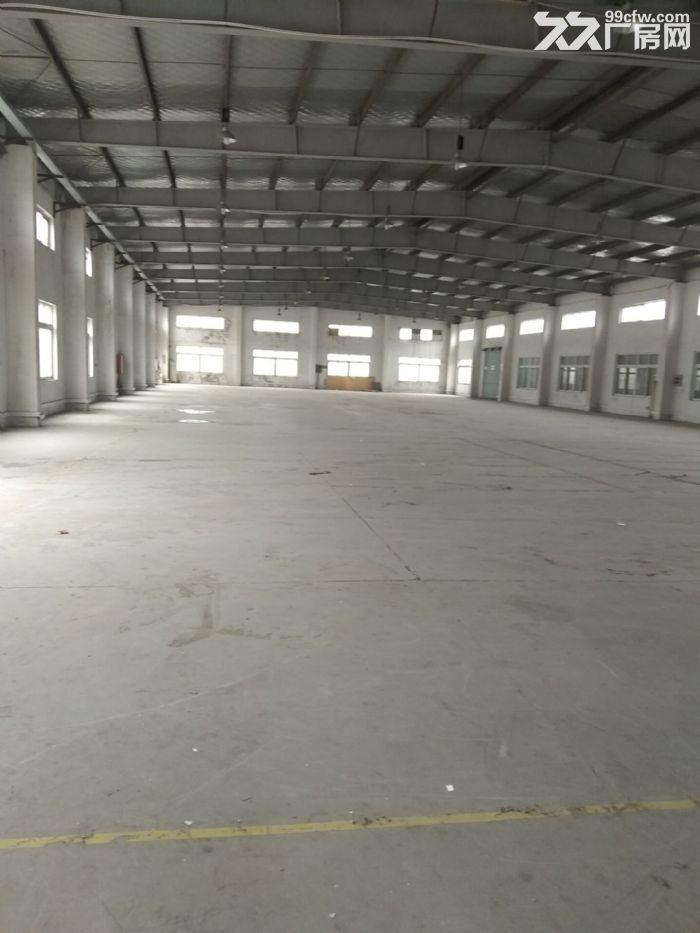 厂房出租嘉定南翔新出独栋标准厂房2100平,层高8米,大小可分租-图(2)