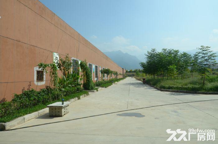 西安独栋标准工业厂房整租、分租18元/月-图(5)