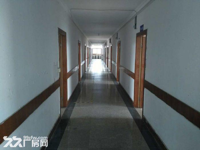 吴江开发区19000平米,层高8米-图(1)