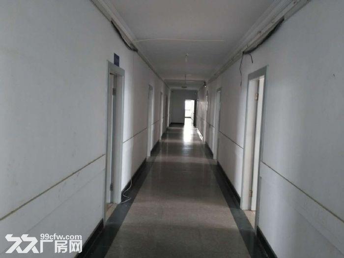吴江开发区19000平米,层高8米-图(3)