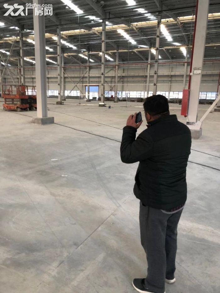 滨海40000平方三类厂房出租可分割分租-图(6)