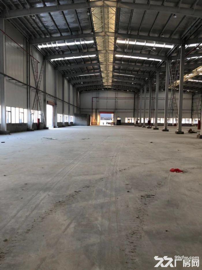 滨海40000平方三类厂房出租可分割分租-图(5)