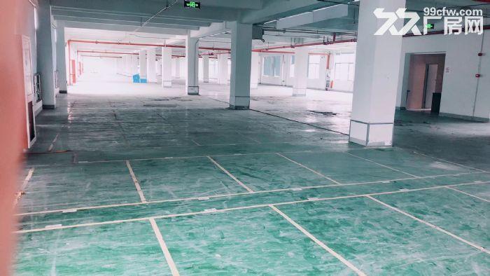 萧山标准新建厂房,整栋10000方单层1500方,适合淘宝仓储-图(2)
