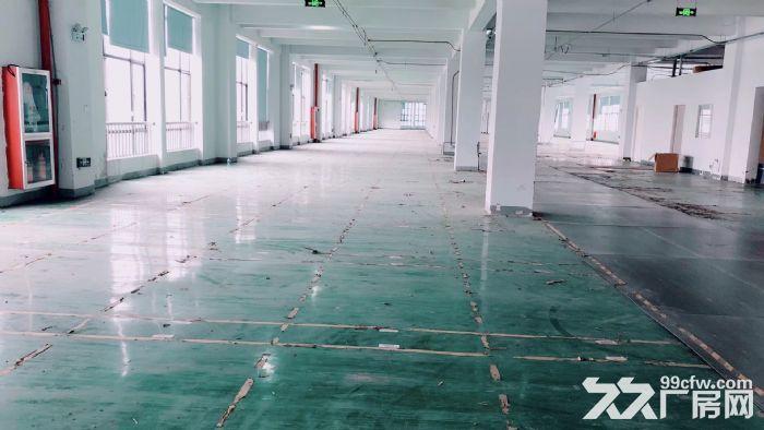 萧山标准新建厂房,整栋10000方单层1500方,适合淘宝仓储-图(5)